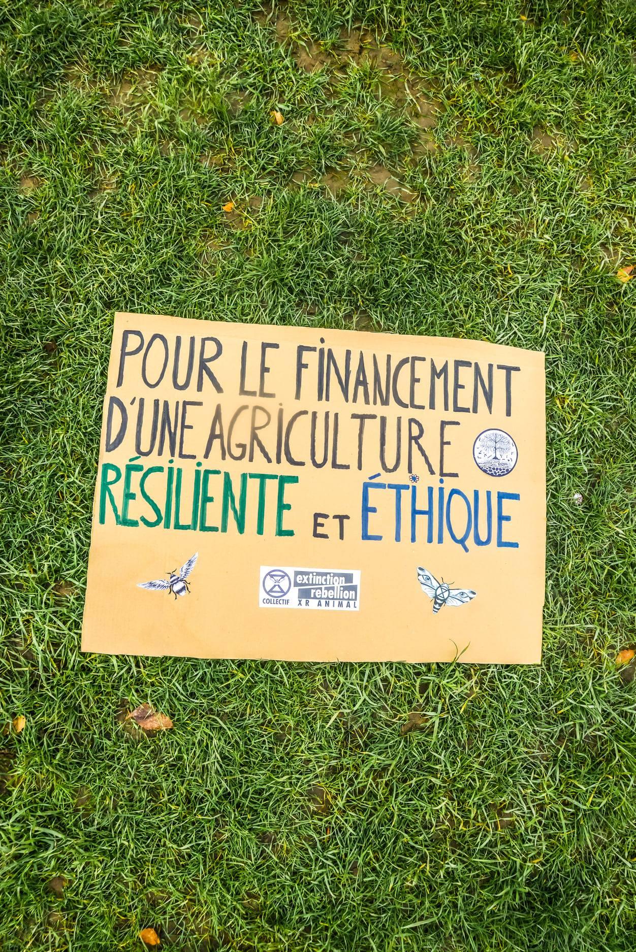 casejouemaintenant-12-pancarte