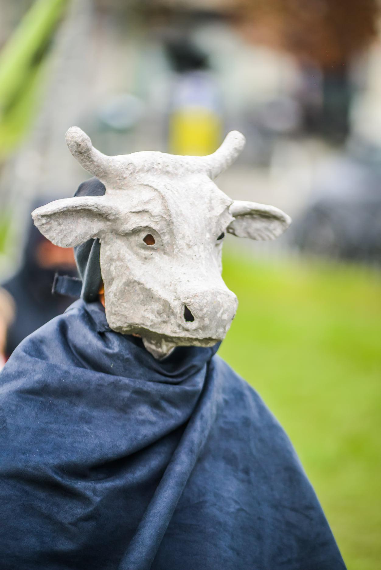 casejouemaintenant-7-vache