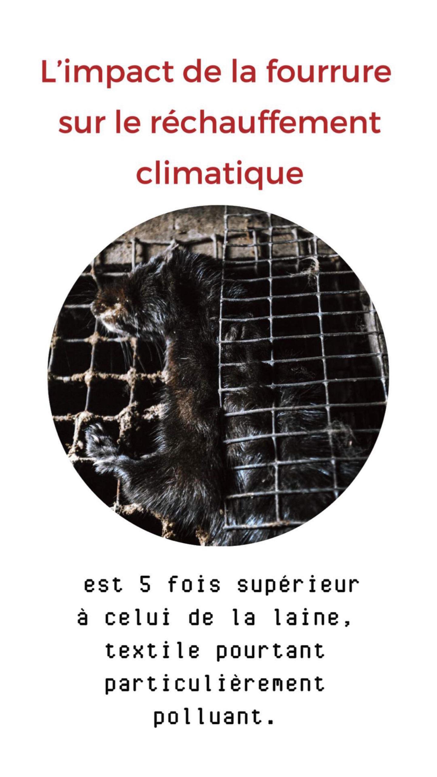 CATALOGUE-CAMPAGNE-ANTI-FOURRURE-page-8