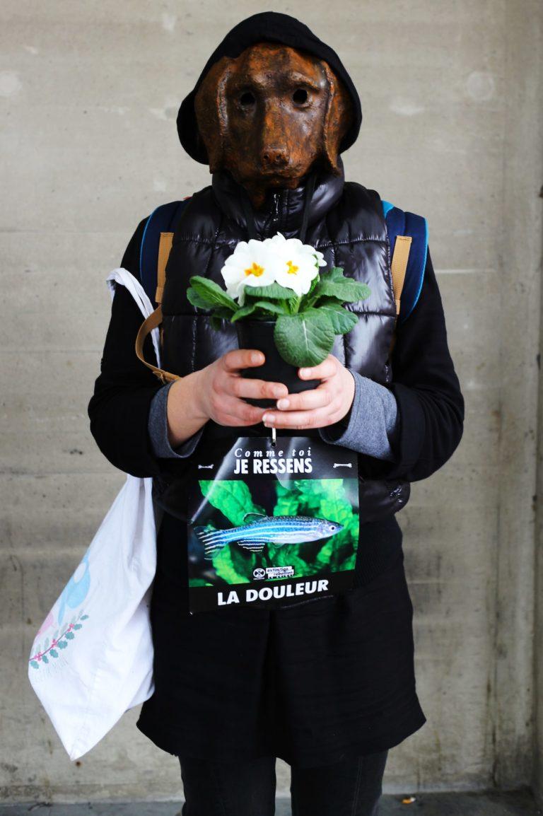 xr-animal-stop-experimentation-fleur-chien-min
