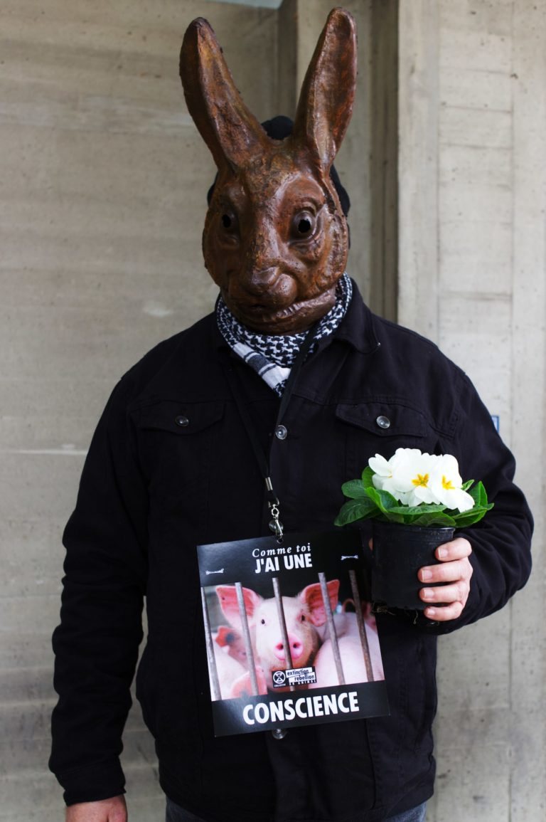 xr-animal-stop-experimentation-fleur-lapin-min