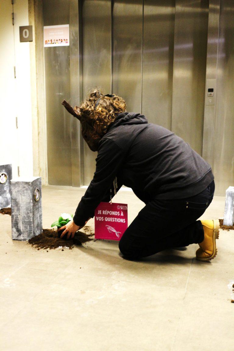 xr-animal-stop-experimentation-recueillement-lapin-min