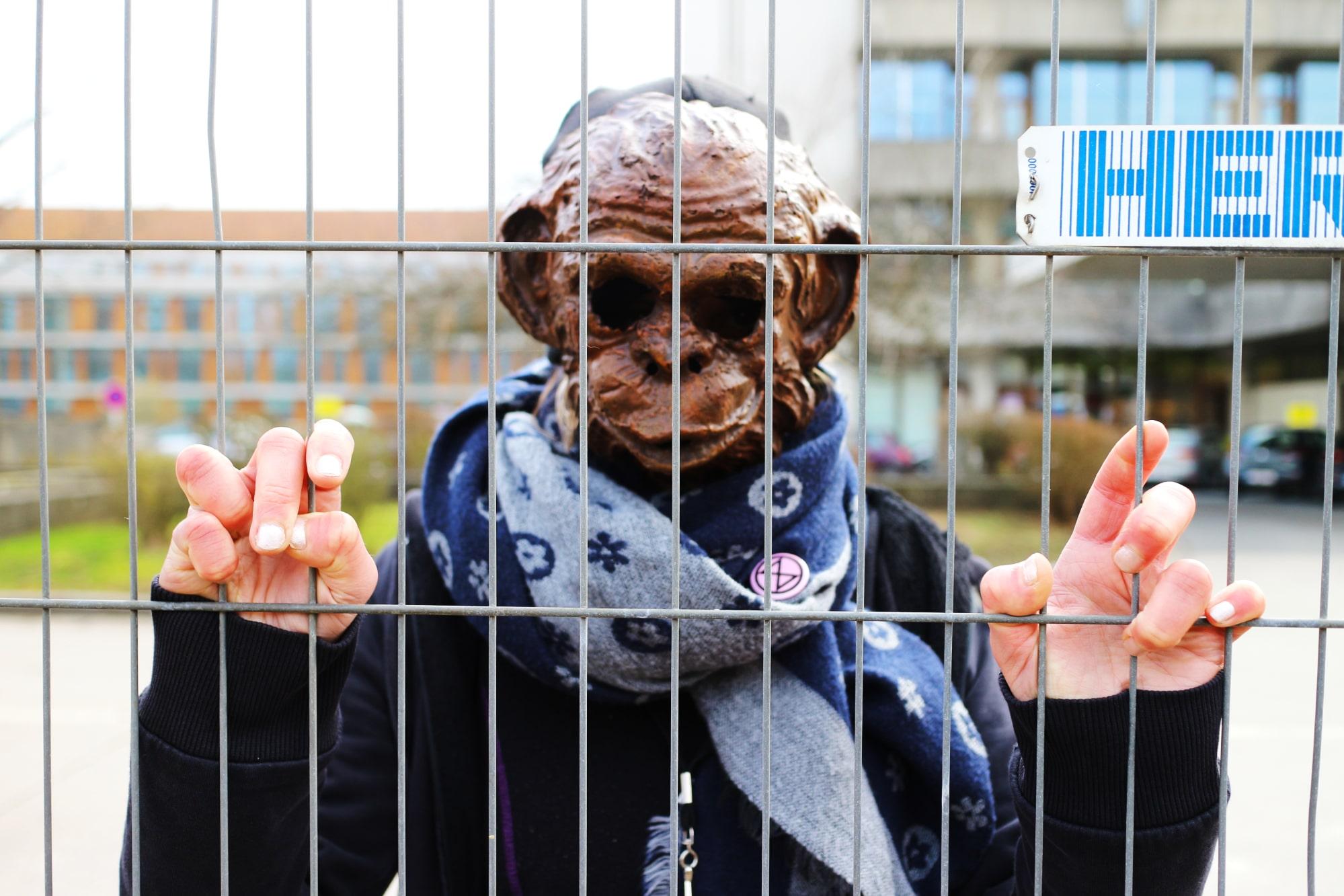 xr-animal-stop-experimentation-singe-grille-min